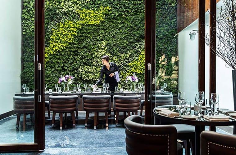 Restaurant Living Wall