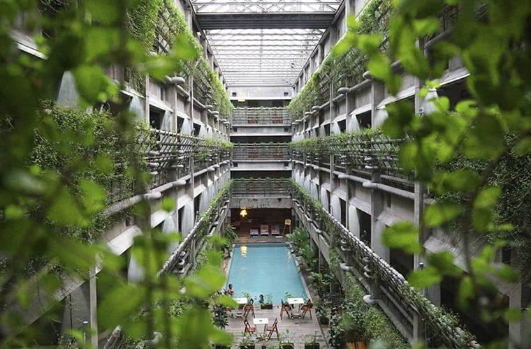 Plant Friendly Hotel Ideas